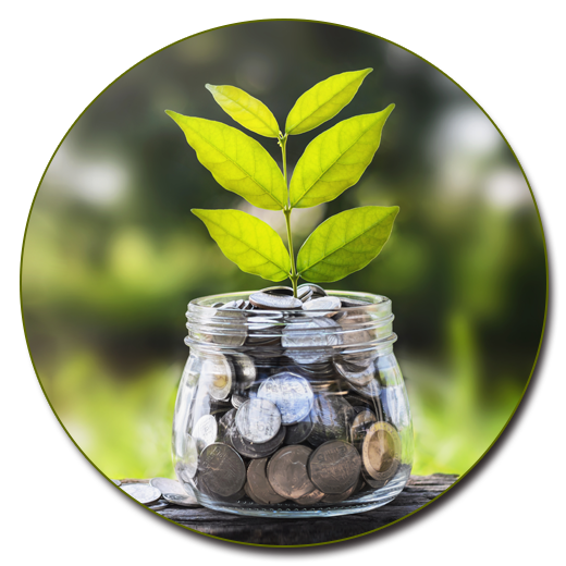 Savings jar with growing leaves